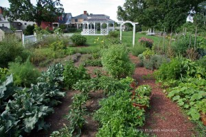 Motor Coach Tours at Salem Cross Inn highlights local events that captivate New England, such as the Heirloom Herb Gardens at Salem Cross Inn, West Brookfield, MA