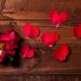 Valentine's-Day463142833