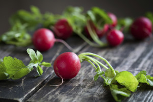 Radishes, some of the Freshest Spring Produce in Massachusetts - Salem Cross Inn, West Brookfield, MA