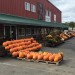 Great Local Farms near Brookfield MA to Visit this Fall